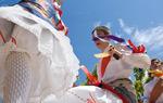 Dancers. Popular Festival at Utande, province of Guadalajara / Jesús de los Reyes Martínez.