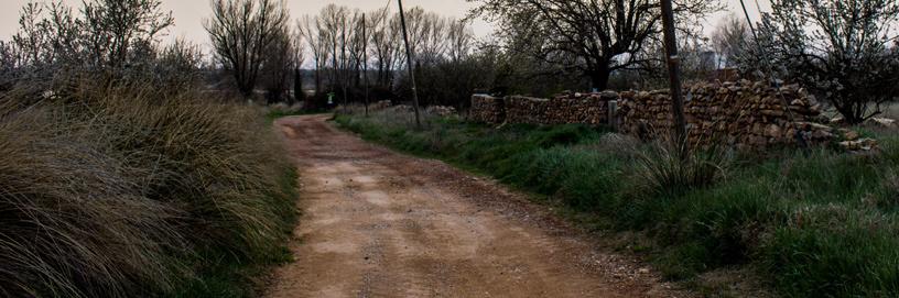 Gallocanta, Zaragoza.