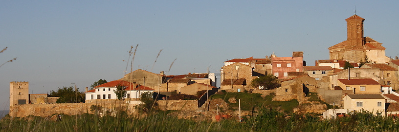 PAN-Pozuel-del-Campo-2,-Teruel.-ALC.jpg