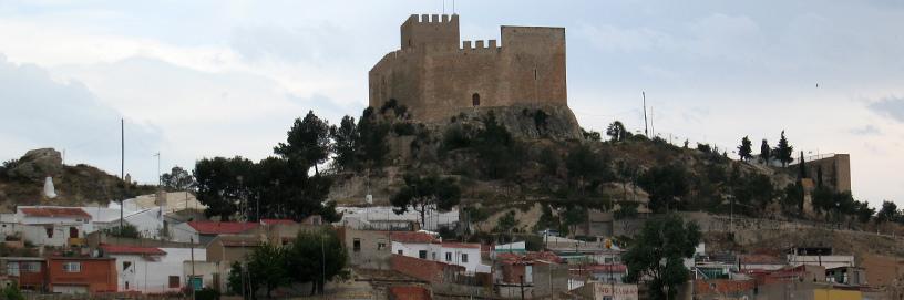 PAN-Petrer-1,-Alicante.-ALC.jpg