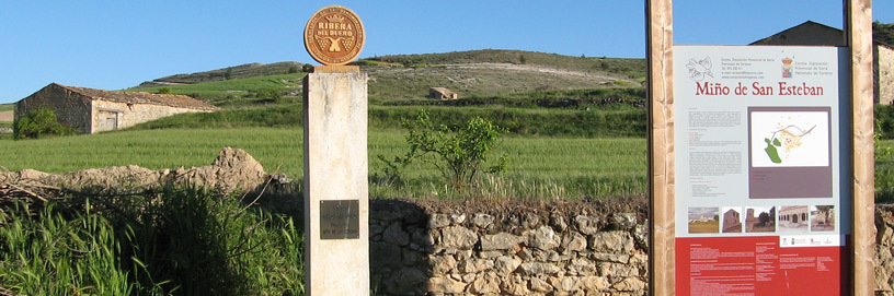 Miño de San Esteban, Soria.