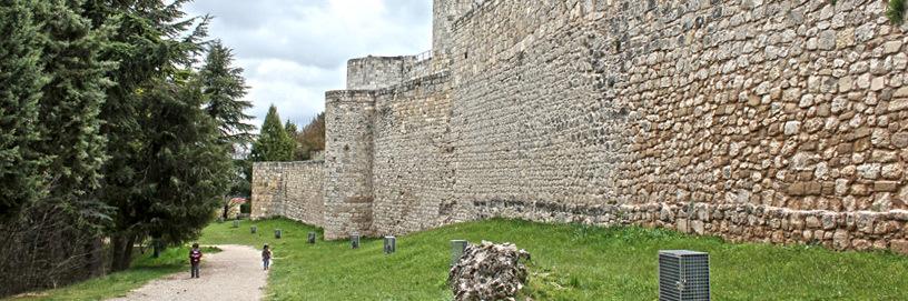 Castle of Burgos.
